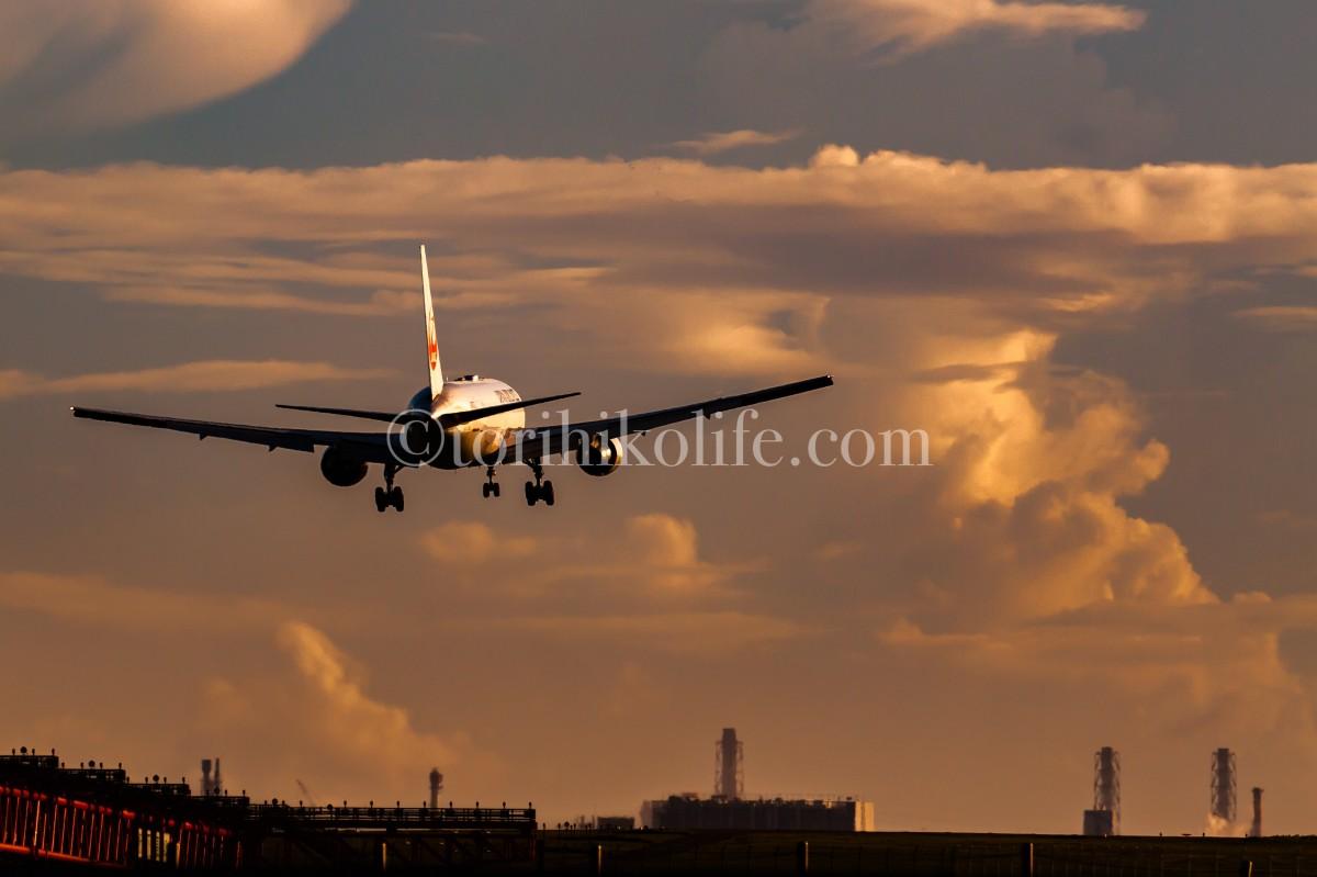夕陽を浴びながら滑走路22へアプローチする飛行機