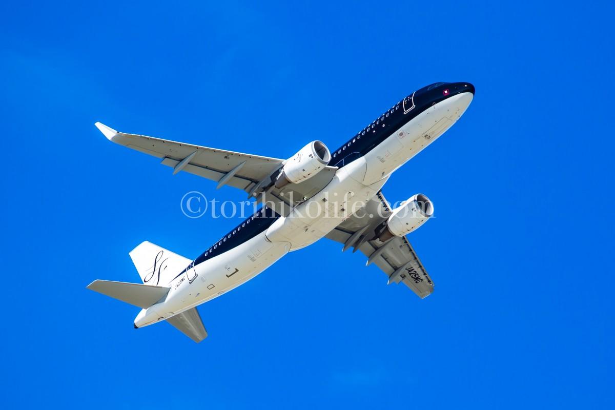 PLフィルターの効果を薄くして撮影した飛行機の写真。空の青がやや薄く写っている