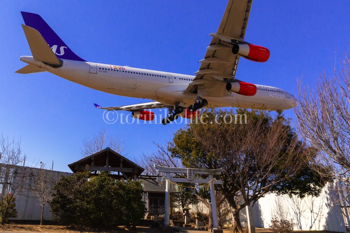 着陸間際で超低空を飛ぶ飛行機が見れれる東峰神社