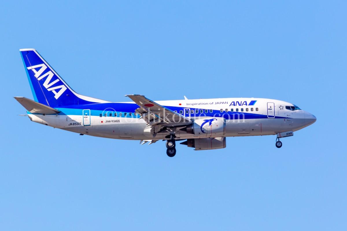 福泉寺近くの畑ポイントから撮影した成田空港B滑走路34Rに降りるANA機