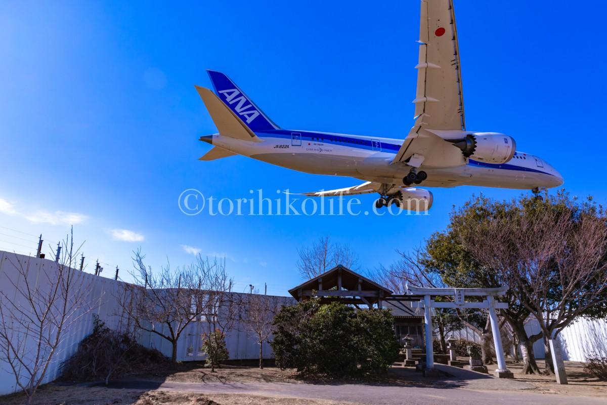 青空の東峰神社とANAの787