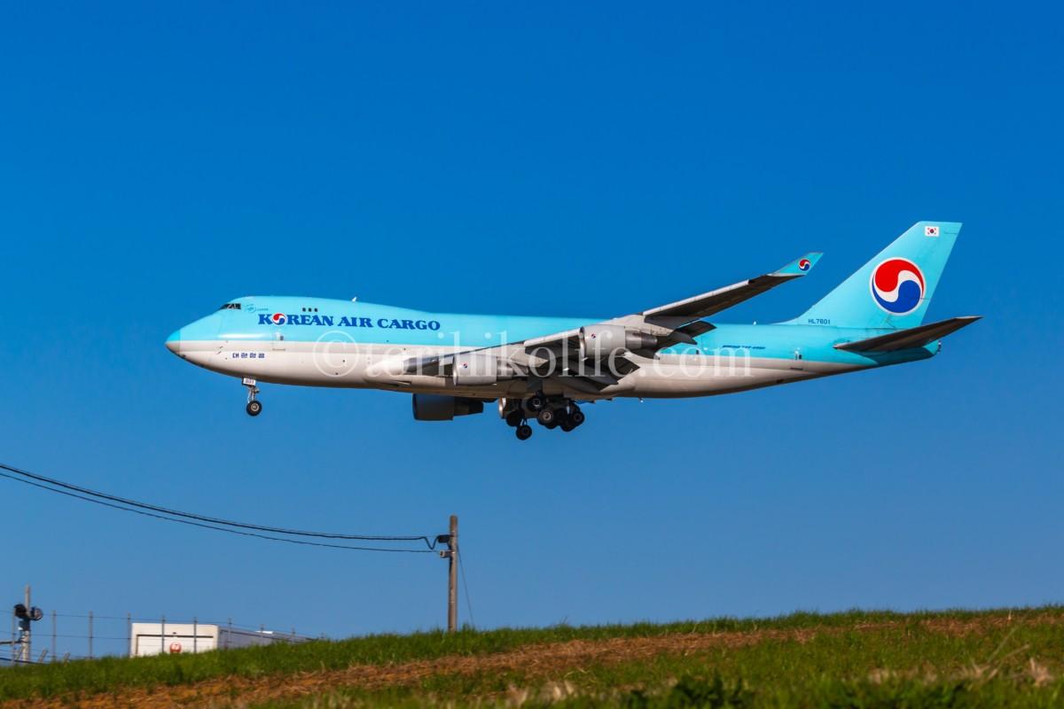 着陸する大韓航空の飛行機を横から撮影した写真。PLフィルターを使うことで、空と草が鮮やかな色になっている