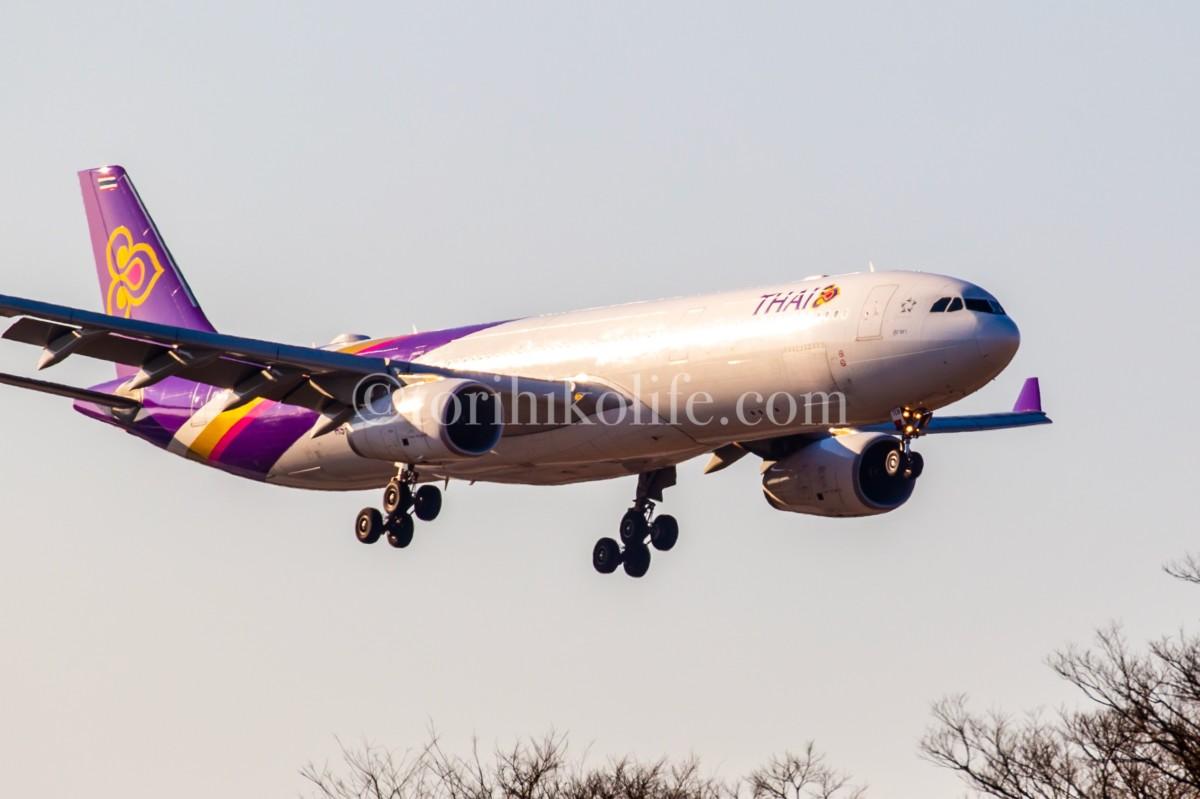 タイ航空の飛行機を前がちで撮影