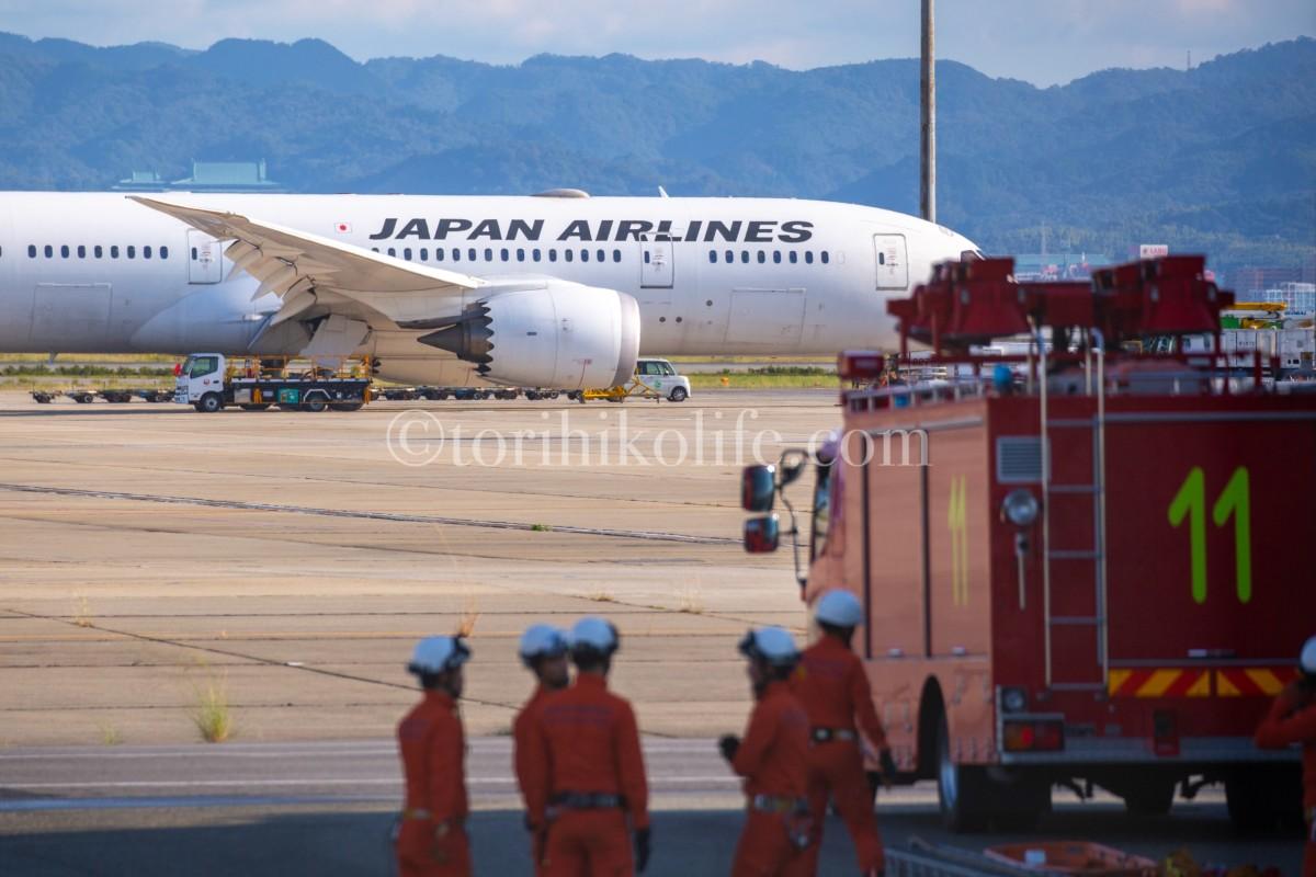 消防署ポイントの撮影スポットの様子を写した写真。手前に消防車、奥にはJALの飛行機が写っている