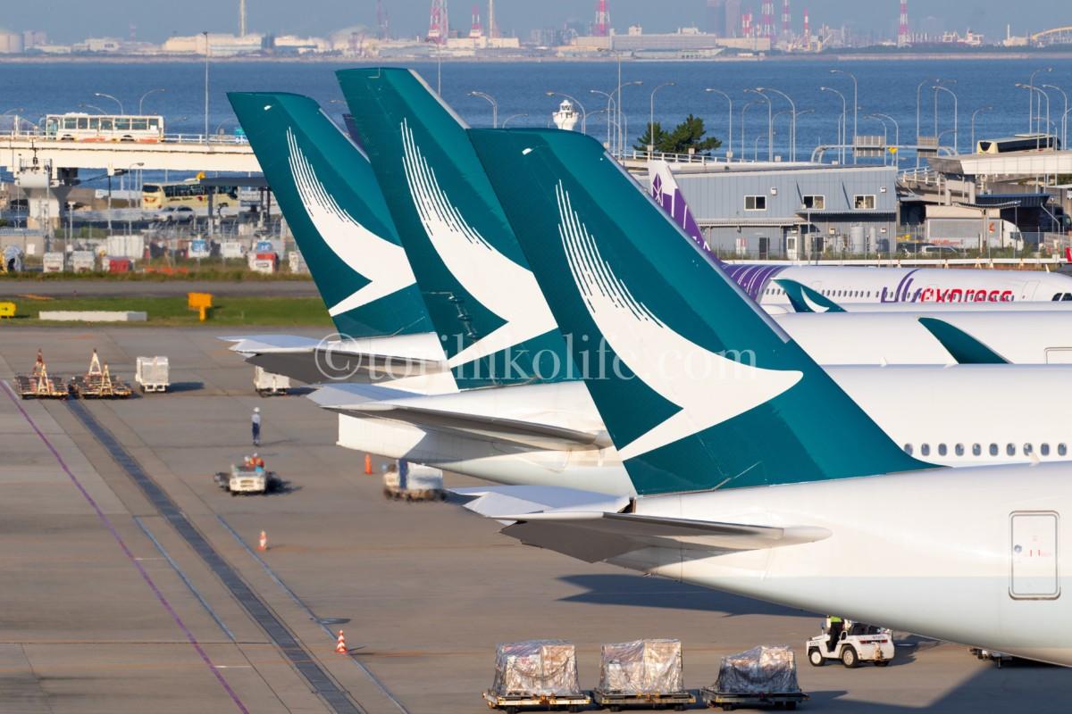 第1ターミナル4階歩道北側から撮影したキャセイの尾翼が並んだ写真