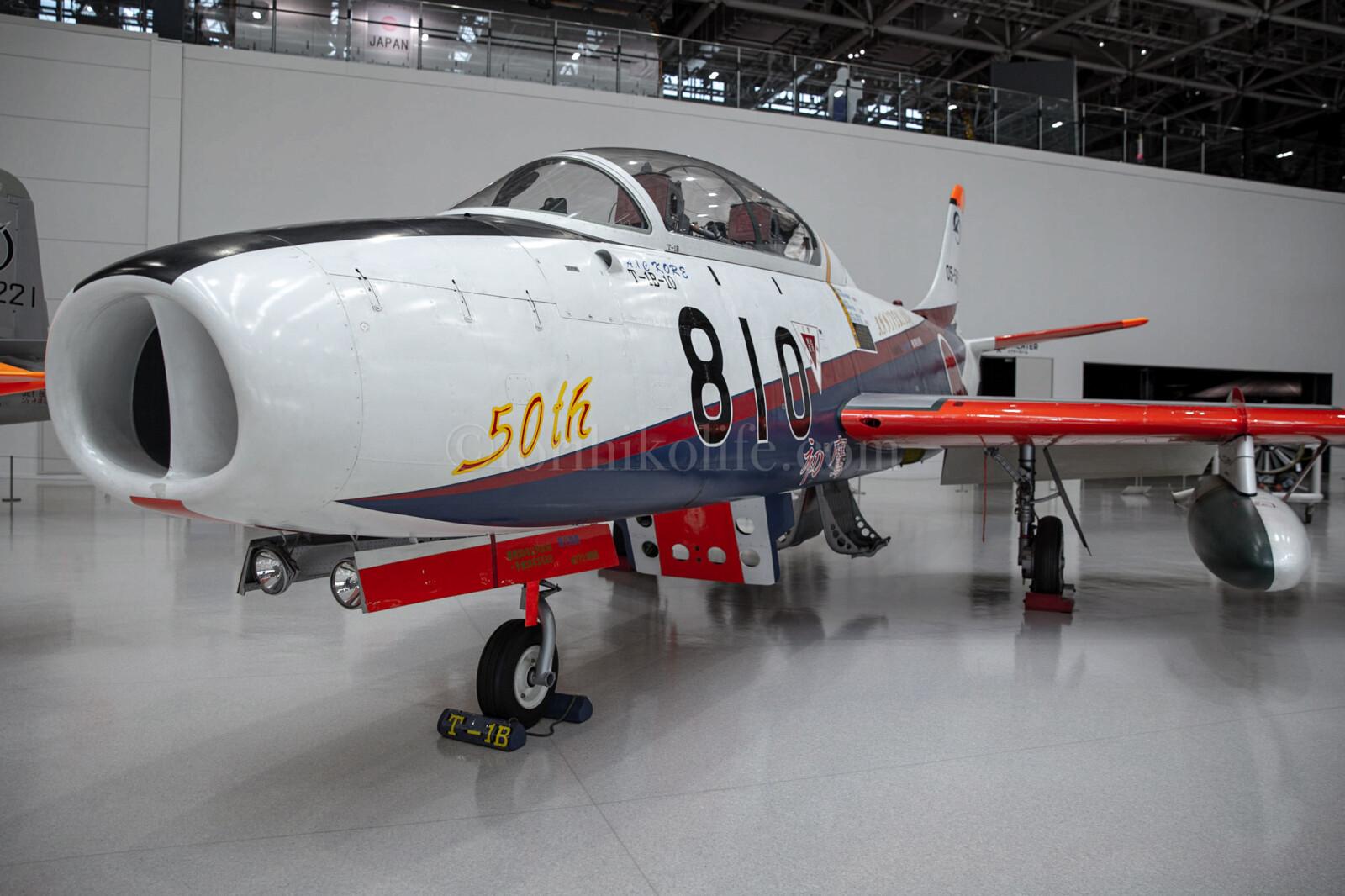 T-1B(ADTW50th特別塗装)